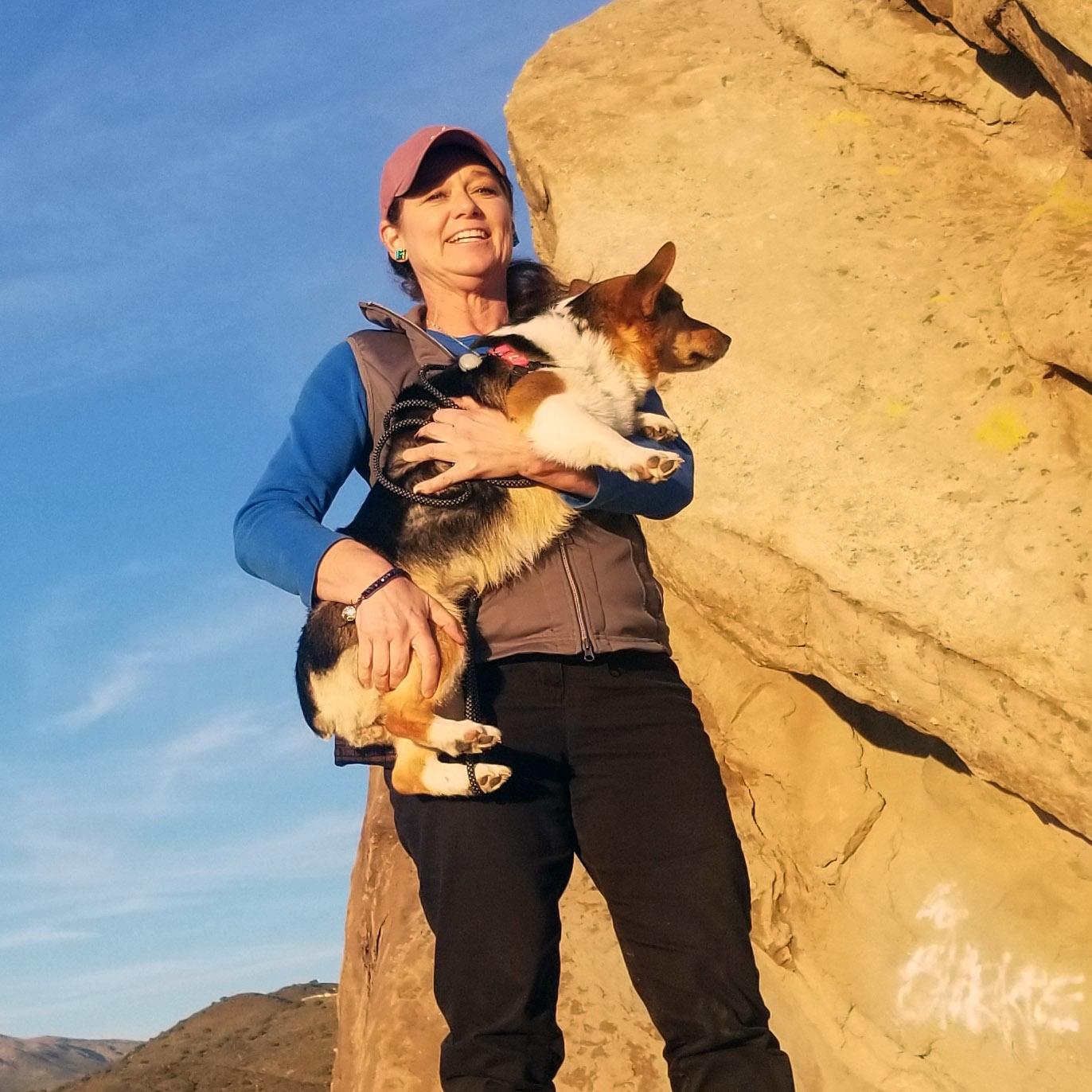 Jill Todd, DVM Holistic Veterinary Pet Care